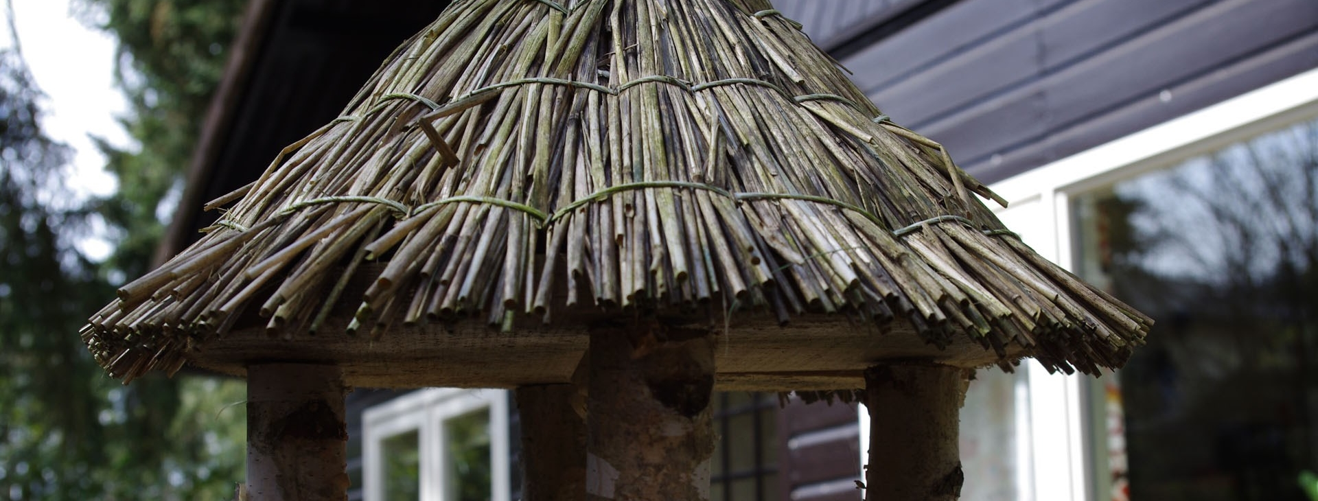 slider-het-kleine-huisje-op-de-veluwe-720-vogelzang